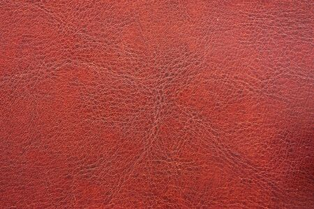 leathery: leather texture