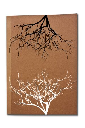 Tree shadows on the book cover  Stock Photo - 7453682