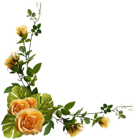Beautiful flower frame Stock Photo