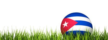 3d rendering of a soccer ball on grass.Cuba Stock Photo - 10714282