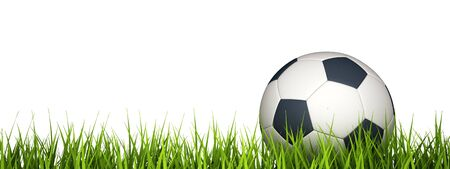 3d rendering of a soccer ball on grass. photo