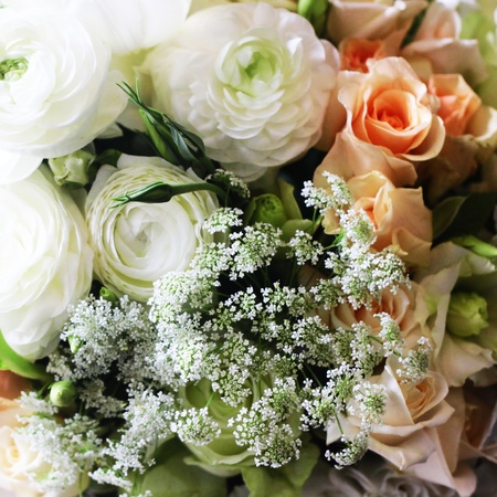beautiful flowers Stock Photo - 13261019