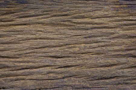 Old wood grain background detail art
