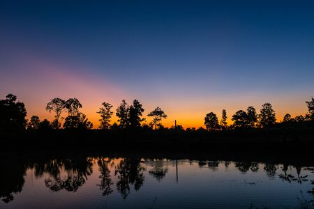 Reflection in the small pond of the forest at sunrise with the beautiful orange light detail landscape