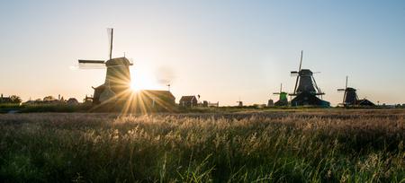 windmills: Windmills  in sunset