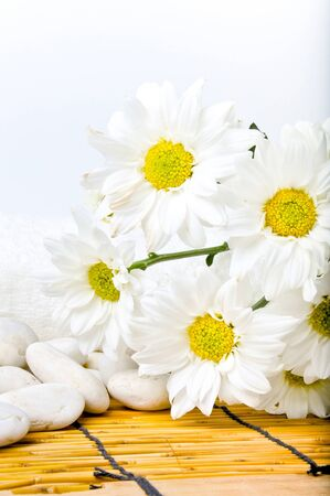 Simple white daisy and candle on bamboo mat with isolated white background photo