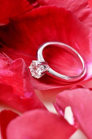 diamond ring put on corolla of red rose and isolated on the white background. Stock Photo
