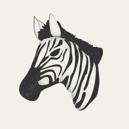 zebra heads: zebra head print