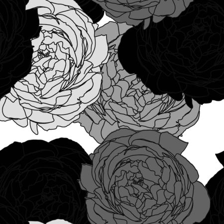 Black and white Floral pattern seamless, Vector