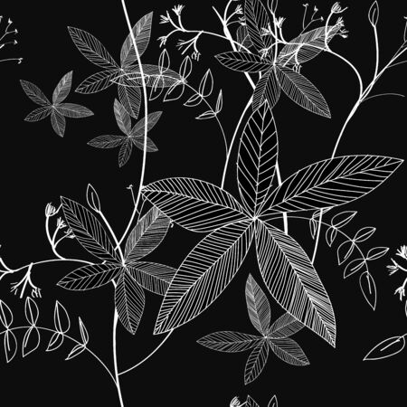 black and white leaf: Black and White Floral pattern seamless Illustration