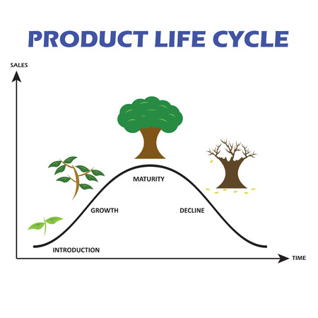 growth chart: Product Life Cycle on White Background
