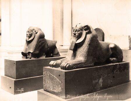 Vintage Photo : 2 Stone Sphinx Sculpture in Cairo Museum,,Egypt 1880