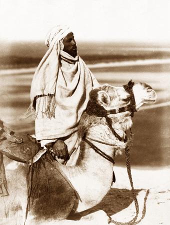 Vintage Photo : Arab riding a camel , Egypt  1880