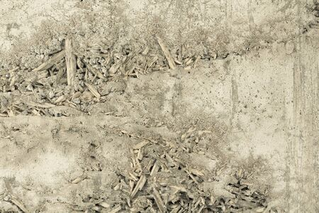rough: Rough cement wall surface Stock Photo