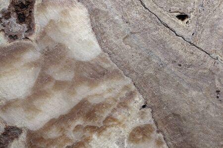 hardwearing: stone texture background.
