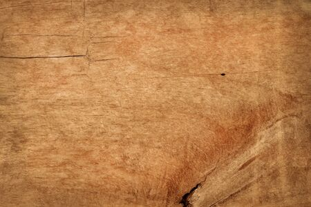 Wooden wall background, texture of dark bark wood with old natural pattern for design art work.