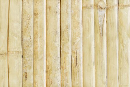 White bamboo fence texture background, pattern of natural wall for design art work.