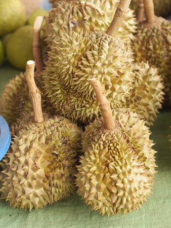 Durian From Thailand