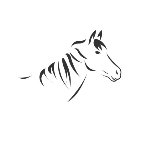 Vector image of an horse black and white. design style. animal. art. symbol. Illustrator. on white background. Illustration