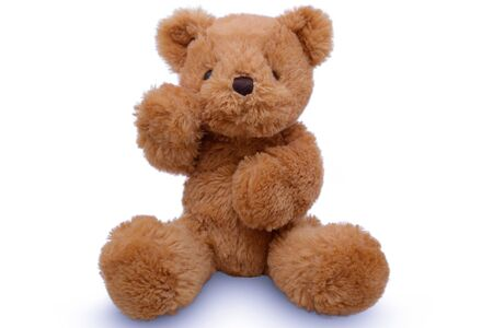 Teddy Bear lift , teddy bear isolated on white background