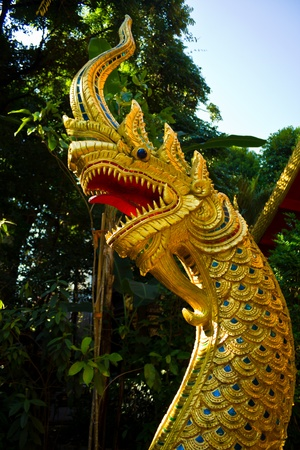 Golden Naga in thai temple photo