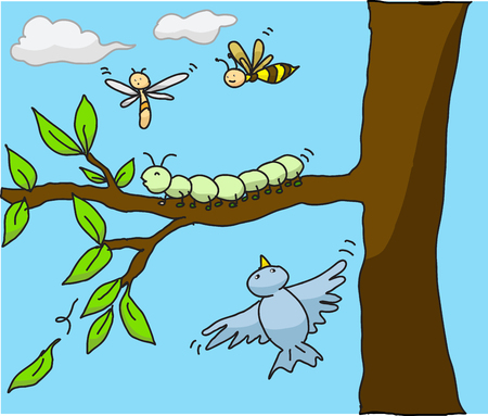 cartoon illustration insects in the nature  Vector