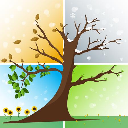 Four seasons in one tree - spring, summer, autumn, winter vector illustration Illustration
