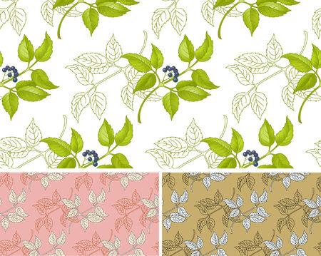floral seamless pattern in three variants Illustration