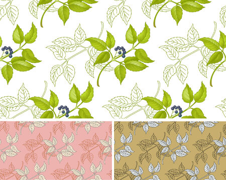 floral seamless pattern in three variants Illustration