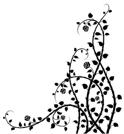rose-bush: starego stylu vector rose-bush Ilustracja