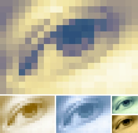 human pixelated vector eye