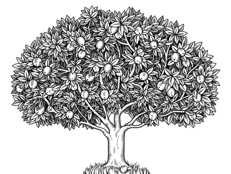 Engraved apple tree full of ripe apples