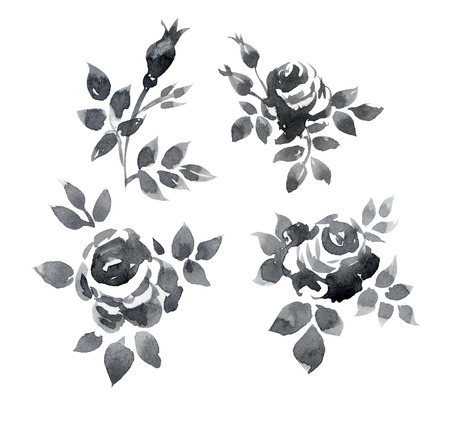 set of hand painted watercolor roses