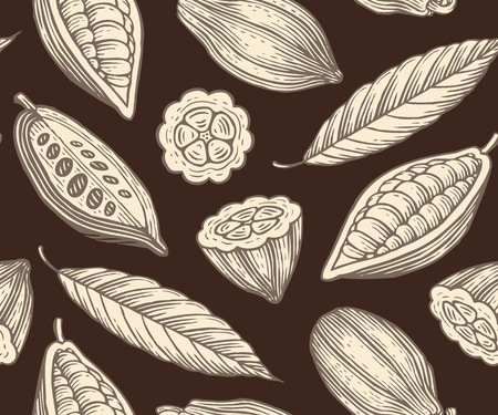 engraved pattern of leaves and fruits of cocoa beans Vector