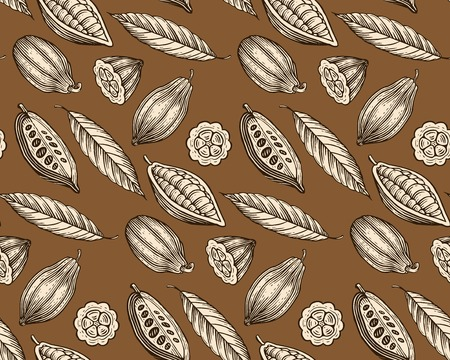 engraved pattern of leaves and fruits of cocoa beans Vettoriali