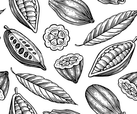 cocoa bean: engraved pattern of leaves and fruits of cocoa beans Illustration