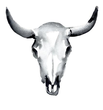 cranial skeleton: watercolor cow skull, vector illustration