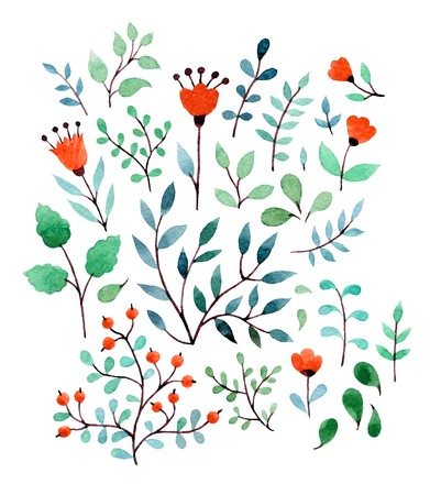 Hand Drawn vintage floral elements. Set of flowers and plants.
