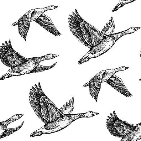xilografia: volar gansos. Ejemplo dibujado mano patrón de la vendimia