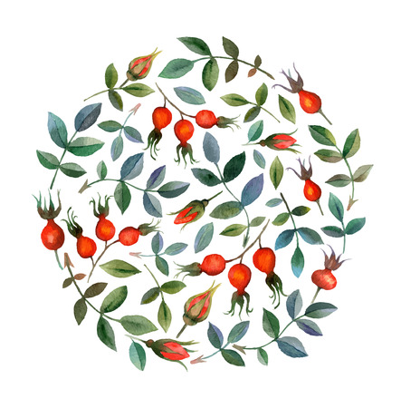 Watercolor vector seamless background with floral elements Vector Illustration