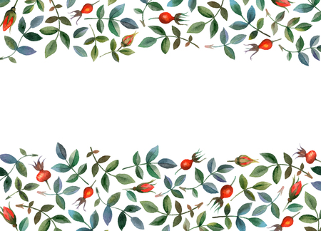dog rose: Watercolor vector seamless background with floral elements