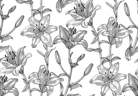 lily: Sprigs of blooming lily. Engraved seamless pattern