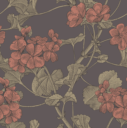 botanical drawing: Sprigs of blooming geranium. Engraved seamless pattern Illustration