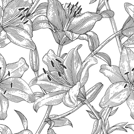 etched: Sprigs of blooming lily. Engraved seamless pattern