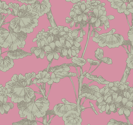 geranium: Sprigs of blooming geranium. Engraved seamless pattern Illustration