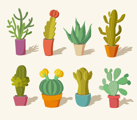 Vector collection of cactus in pots Illustration