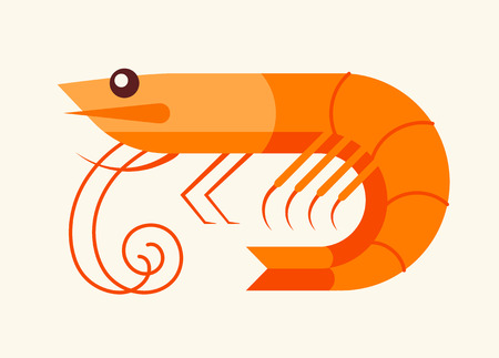 shell fish: Shrimp isolated icon, seafood icon