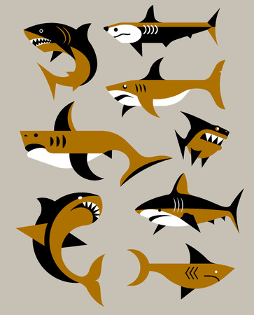 cartoon whale: Vector flat set of sharks Illustration