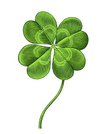 four texture: Engraved illustration of four leaf clover