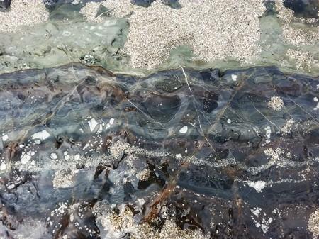 Parallel lamination, Puntarenas, Costa Rica Imagens